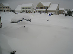 Snowed In - February 2010